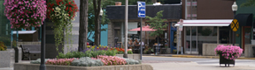 municipal services: clean downtown street with flower planter and hanging baskets